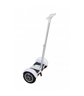 Велосипед Felt Cruiser Squealer Men 21&quot squealer blue/white